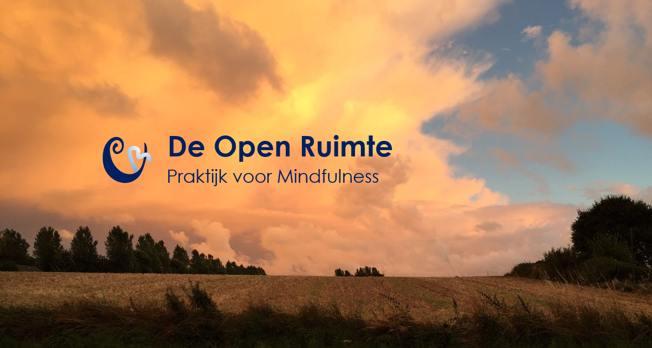 Mindfulness in Best | Wat is Mindfulness | De Open Ruimte